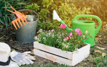 ogrodnictwo3